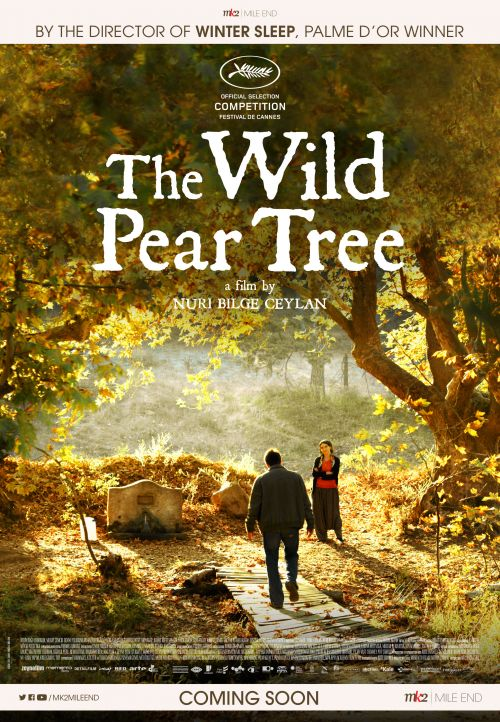 The Wild Pear Tree (STA)
